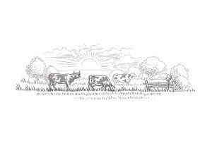 Cows grazing vector sketch.