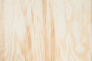 Wooden texture background Wood