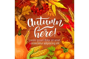 Autumn season harvest holiday poster
