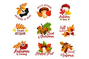 Autumn leaf, acorn, berry, mushroom