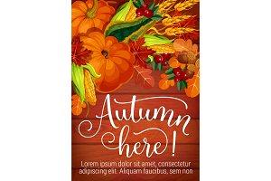 Autumn here seasonal foliage