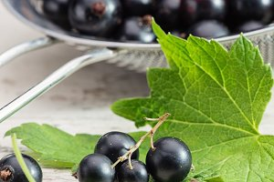 Berries of black currant in colander