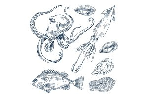 Fish and Marine Creatures as Seafood