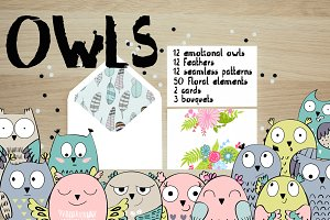 Cute owls. Kit.