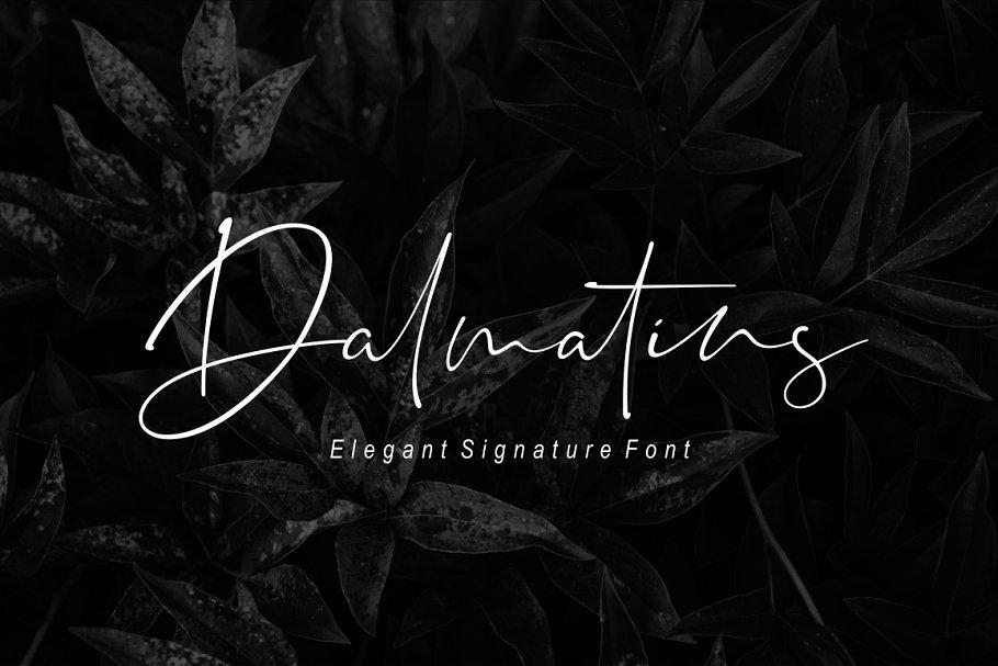 Dalmatins // Elegant Signature Font