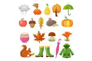 Autumn colored symbols. Vector icon
