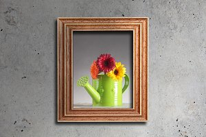 Flowers in frame