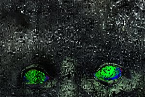 Evil Expression Eyes Over Textured B