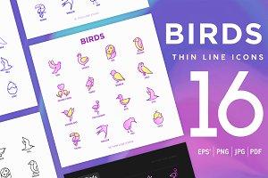 Birds | 16 Thin Line Icons Set