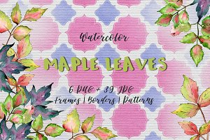 Maple colorful leaves PNG watercolor