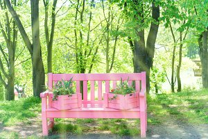 Pink bench in the green park
