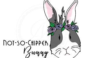 No-So-Chipper Bunny