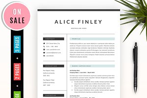 Professional Resume Template - 41