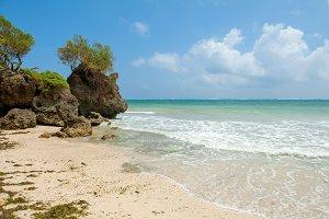 Beach and tropical ocean