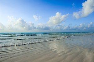 Summer beach and ocean