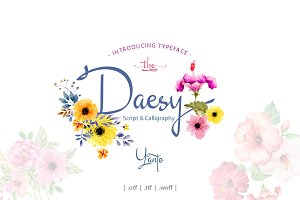 Daesy // Luxury Challigrapy Font