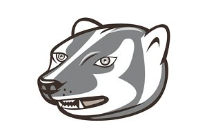 Badger Head Side Isolated Cartoon
