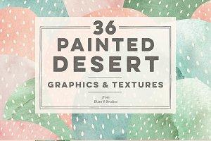 36 Painted Desert & Cactus