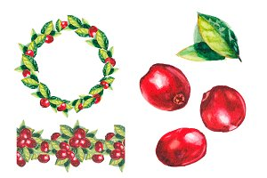 Watercolor cranberries collection