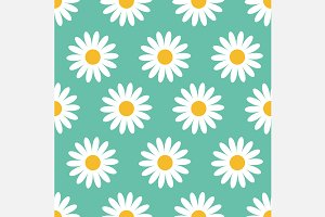 White daisy. Seamless Pattern set.