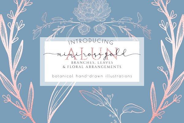 Rose Gold Botanical graphic pack