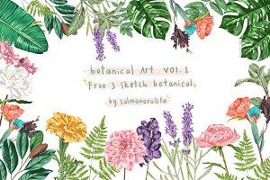 Colored Botanical Illustration Vol.1