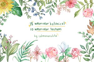 Watercolor Botanical & Texture Vol.1