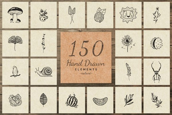 150 Hand Drawn Elements -Nature III-