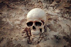 Human skull on the sand
