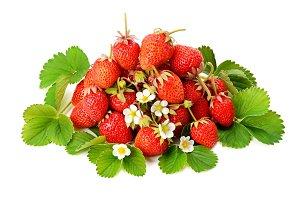 Fresh strawberries on green leaves i