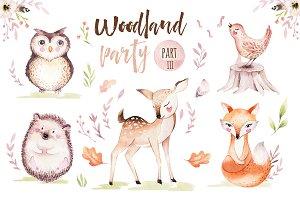 Woodland party III