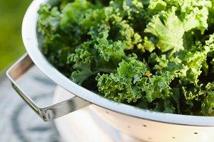 Fresh Kale just washed in colander