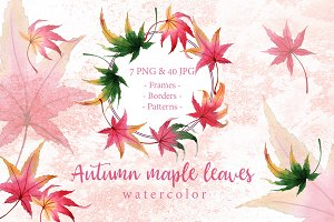 Autumn maple leaves PNG watercolor