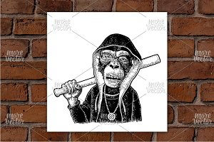 Monkey in hoodie hold baseball bat