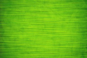 GreenStripesCanvas_MB2015_2a.jpg