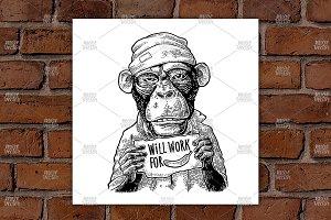 Monkeys WORK FOR FOOD