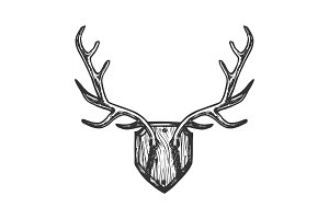 Deer horns engraving vector