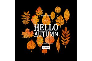 Hello Autumn! Set sale banners