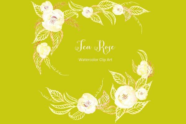 Tea  roses set. Watercolor Cip Art