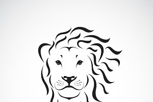 Vector of lion head design. Animal.