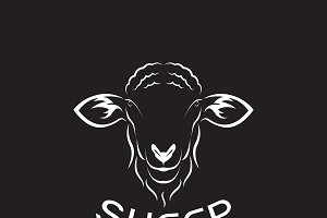 Vector of sheep head design. Animal.