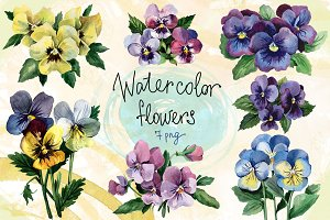 Watercolor flowers set (Pansy)