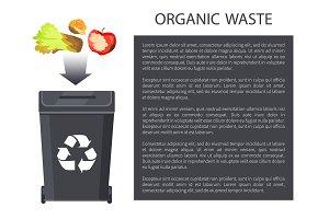 Organic Waste Throwing in Bin Vector