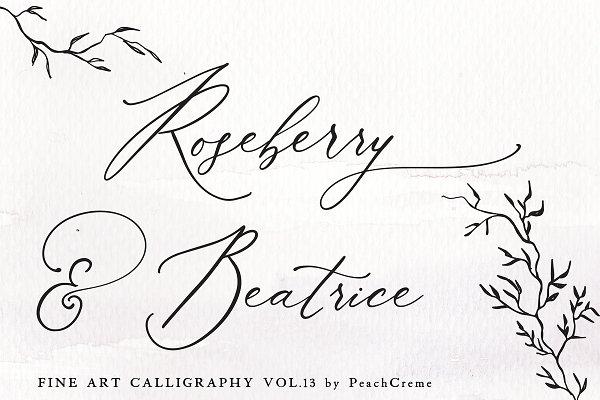 Roseberry & Beatrice Vol.13