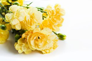 Yellow soft flowers bouquet