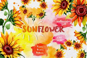 Sunflower PNG watercolor flower set