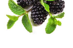 Blackberry with  mint leaves isolate