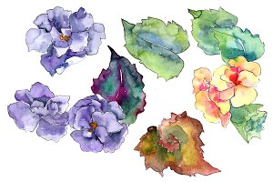Watercolor gardenia wildflower PNG