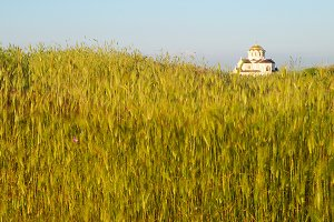 Field of grass and the temple. Antiq