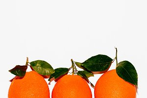 Fresh Oranges on a white wall backgr